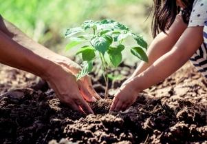 Otra forma de ver la educación ambiental en Conama 2018